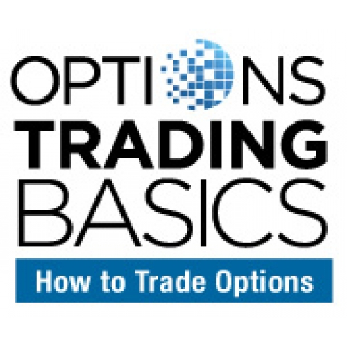 Trade options course